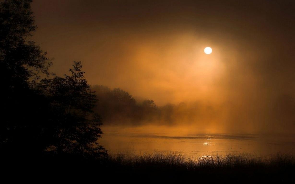 3d Game Wallpaper For Mobile Moonlight Mist Lake Nature Slovenia Trees Shrubs
