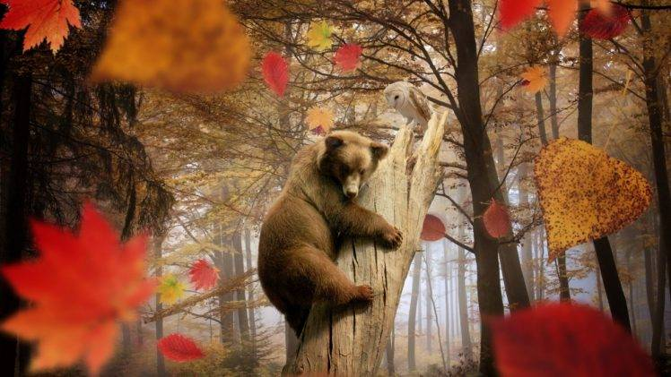 Full Screen Desktop Fall Leaves Wallpaper Nature Landscape Trees Leaves Fall Animals Bears
