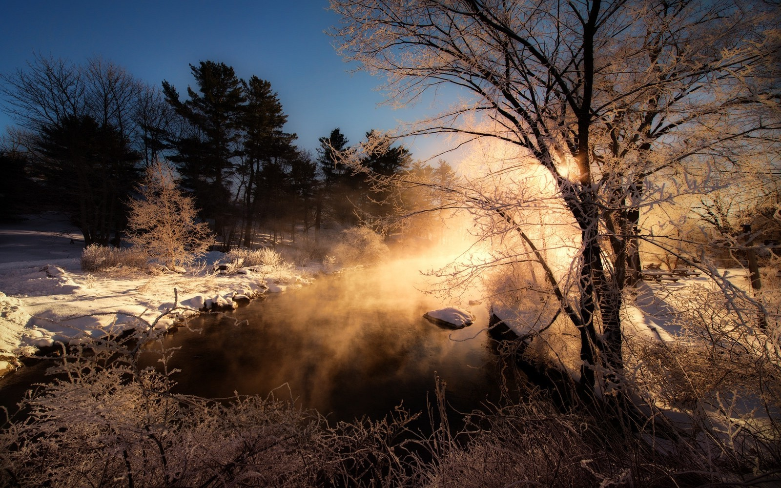 Fantasy Forest 3d Desktop Wallpaper Sunrise Nature Mist Winter Landscape Morning Trees