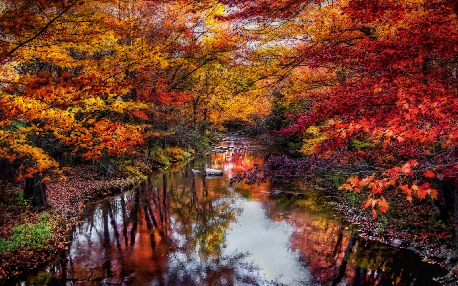 New England Fall Themed Wallpaper Nature Landscape River Leaves Colorful Trees Fall