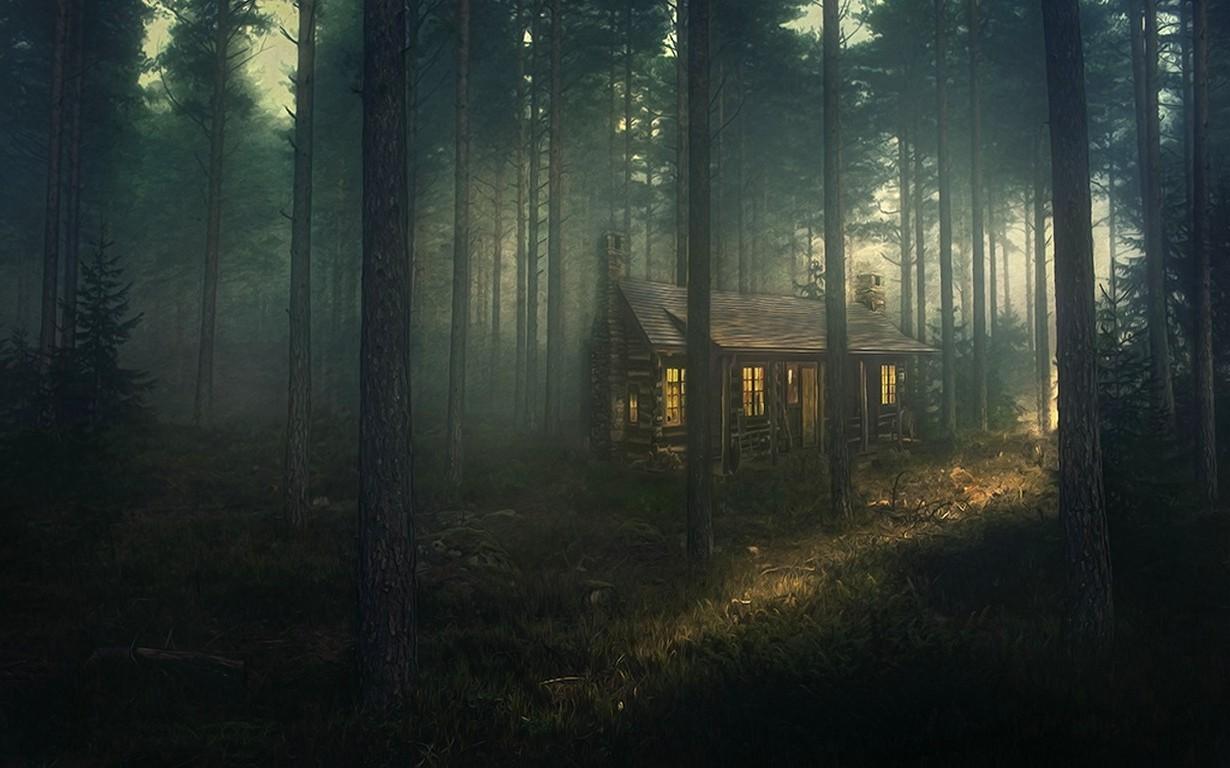 Cars Movie Wallpaper 4k Nature Landscape Forest Mist Grass Sunset Trees