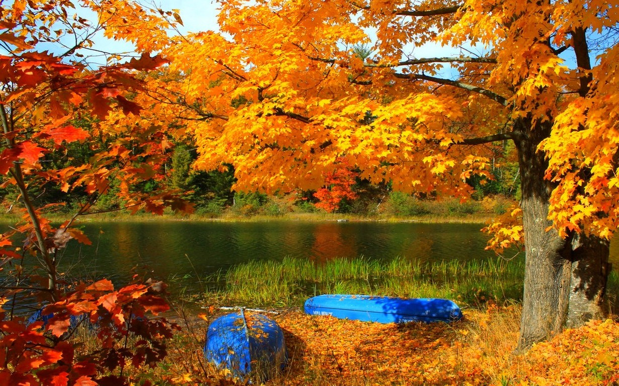 Free Fall Desktop Wallpaper Backgrounds Lake Boat Trees Fall Grass Yellow Red Leaves