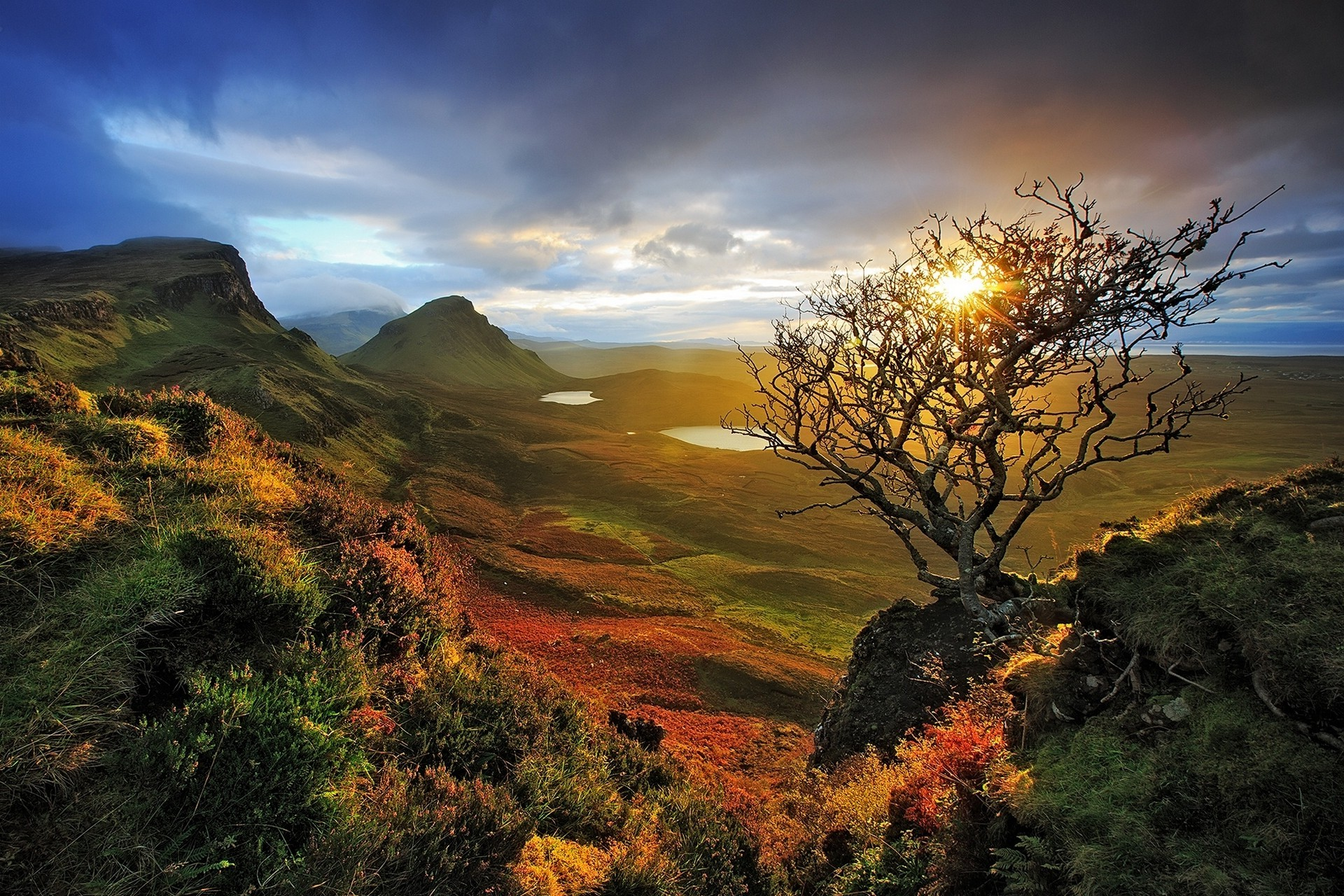 Fall Wallpaper 1600x900 Nature Landscape Skye Scotland Sunrise Dead Trees