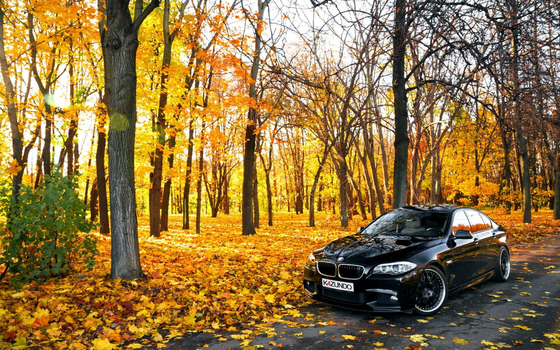 Computer Wallpaper Fall Leaves Car Bmw Leaves Trees Road Wallpapers Hd Desktop And