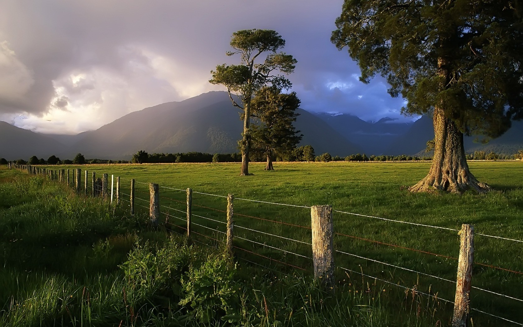Nature Full Hd 3d Wallpapers 1920x1080 Nature Fence Storm Trees Mountain New Zealand