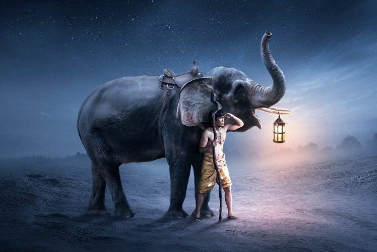 Nechar Wallpaper 3d Fantasy Art Elephants Men Wallpapers Hd Desktop And