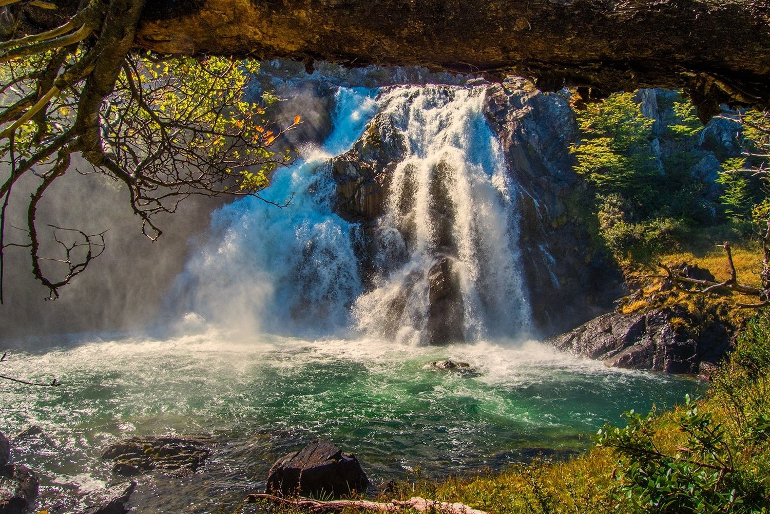 Forest In 3d Landscape Wallpaper Landscape Nature Waterfall Forest Grass River Pond