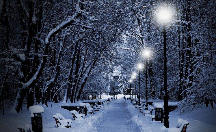 Falling Snow Live Wallpaper For Pc Photography Nature Winter Trees Snow Bench Night