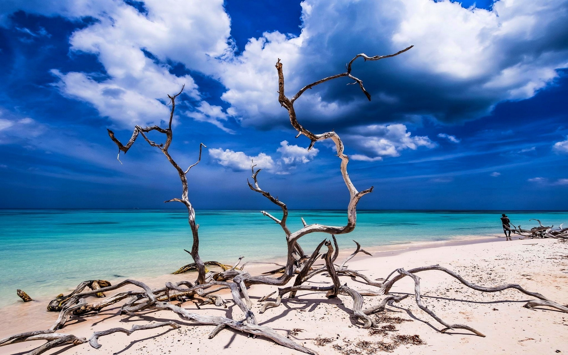 3d Nature Wallpapers Free Download Mobile Landscape Nature Beach Sand Tropical Sea Sky