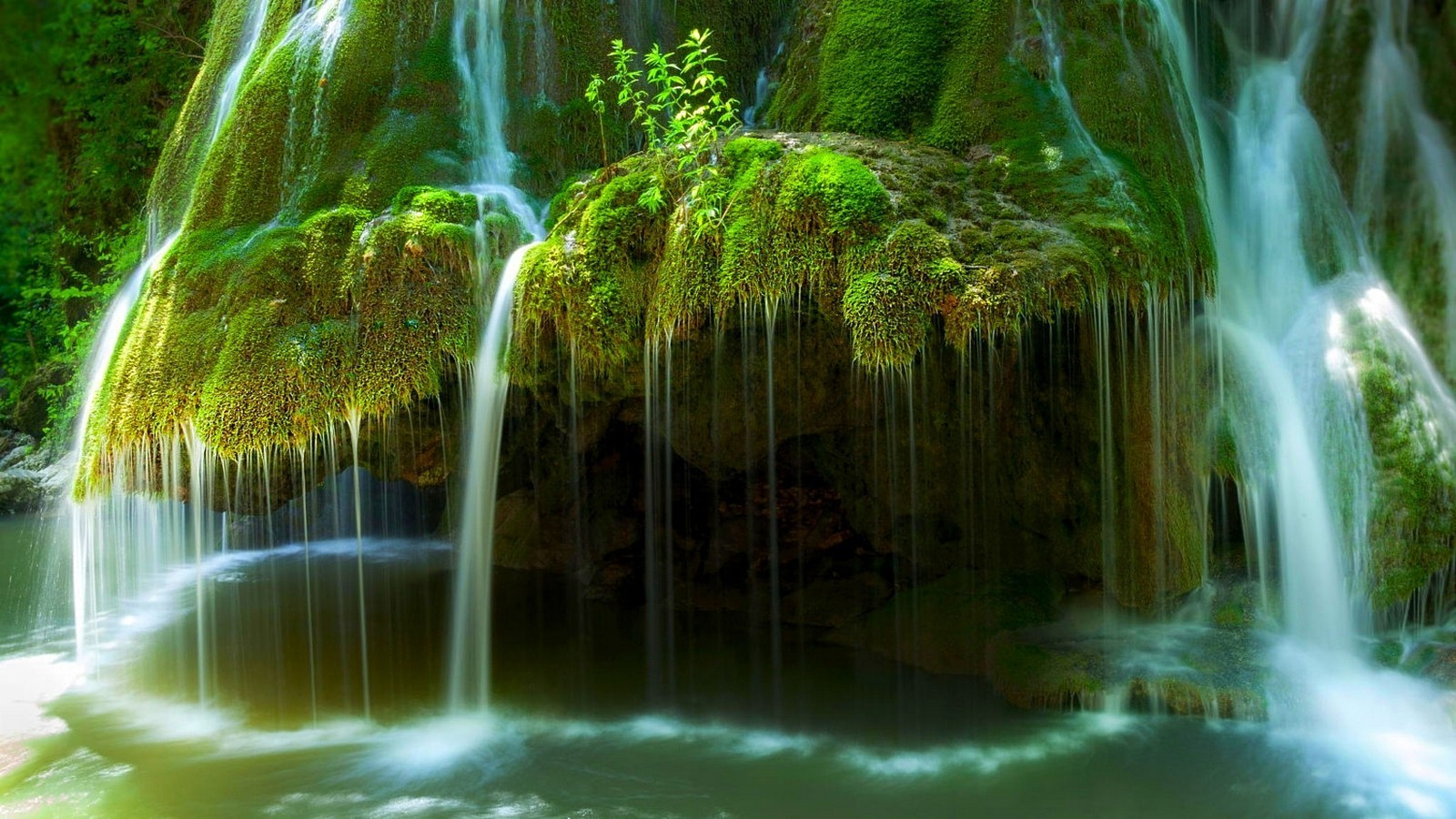 3d Live Wallpaper Download Pc Nature Landscape Waterfall Moss River Green Long