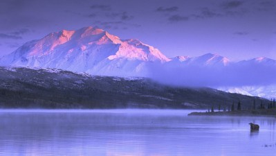 nature, Landscape, Mountains, Snow, Lake, Sunset, Mist, Cold, Moose, Alaska Wallpapers HD ...