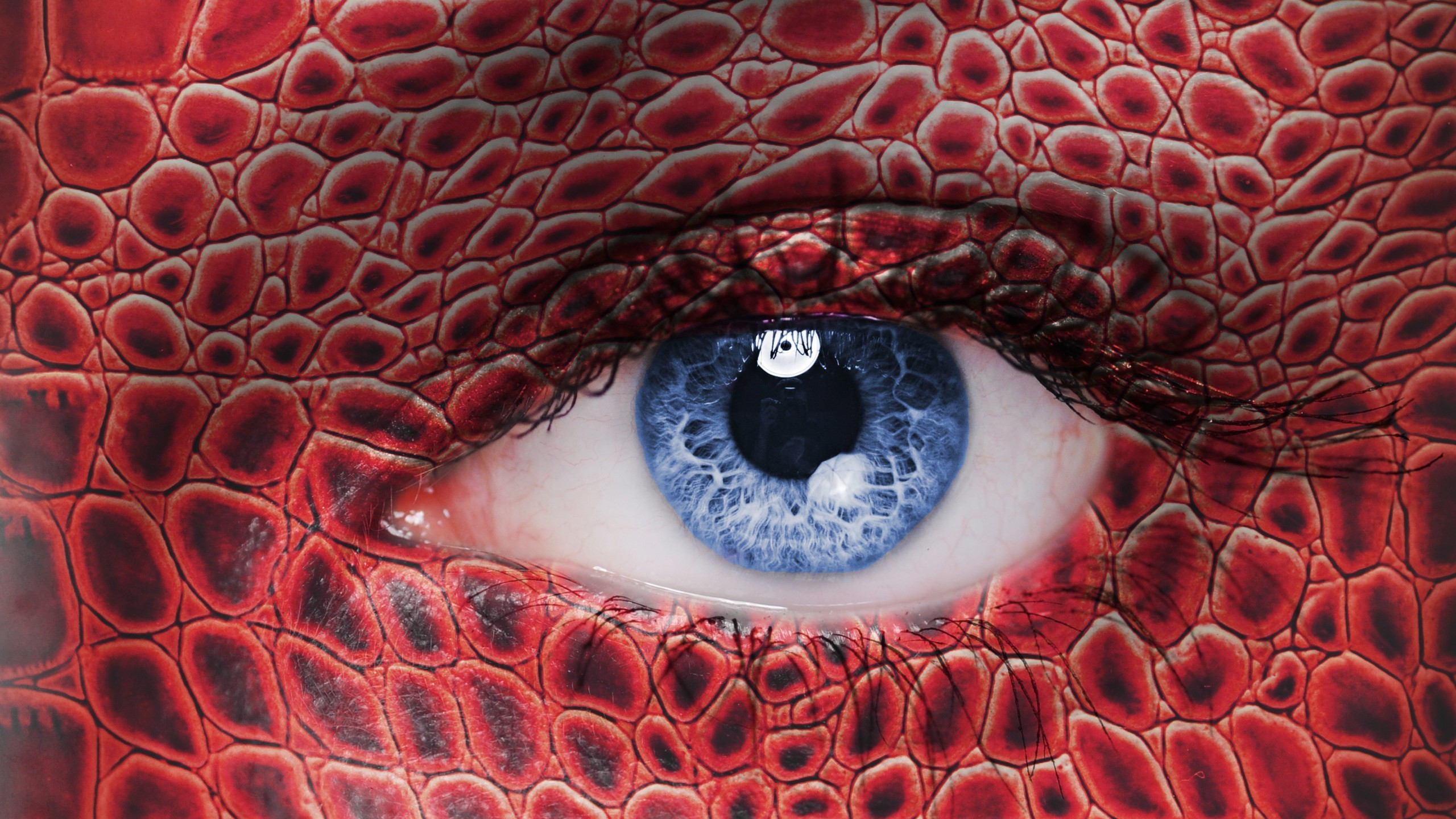 Snake Eyes Hd Wallpapers Women Eyes Looking At Viewer Blue Eyes Skin