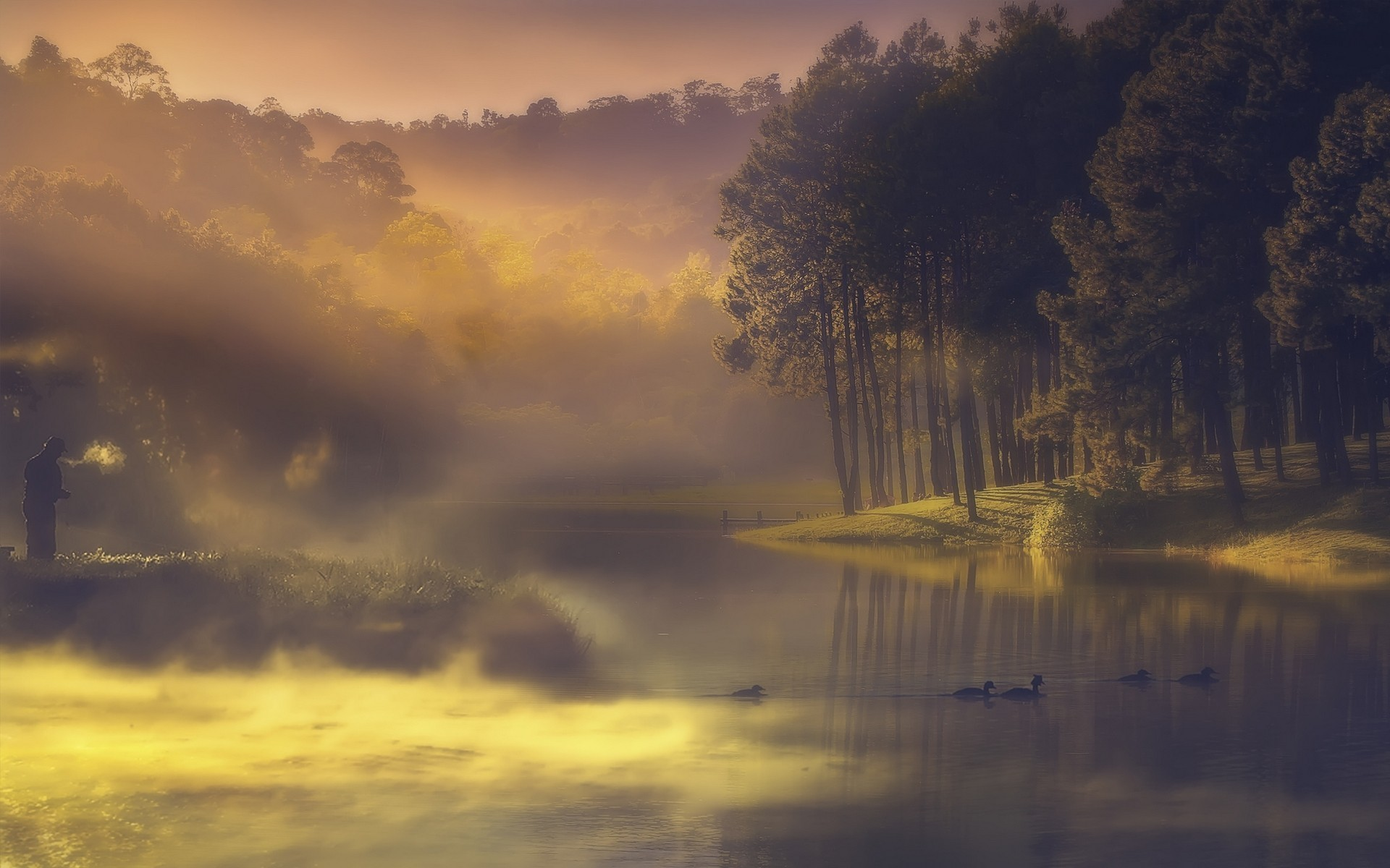 Hd Painting Wallpapers Download Trees Brume Duck Lake Forest Landscape Sunset