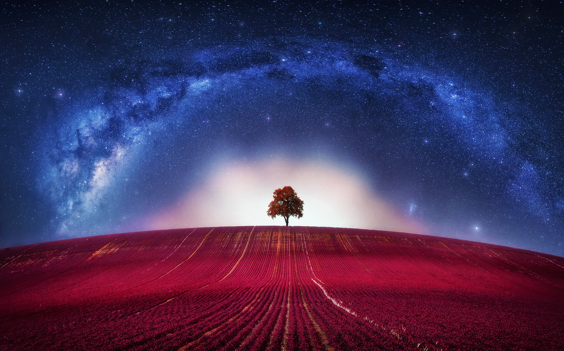 3d Hd Wallpapers For Laptop 1366x768 Universe Trees Digital Art Stars Wallpapers Hd