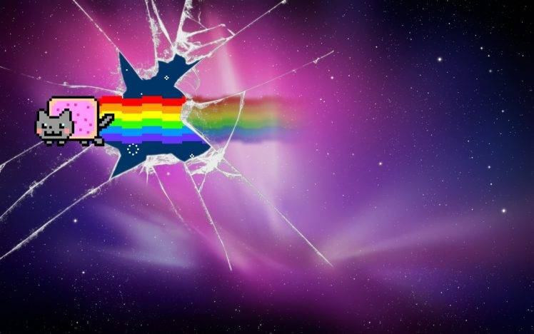 Cute Emoji Wallpapers For Girls Furry Anthros Nyan Cat Broken Glass Wallpapers Hd