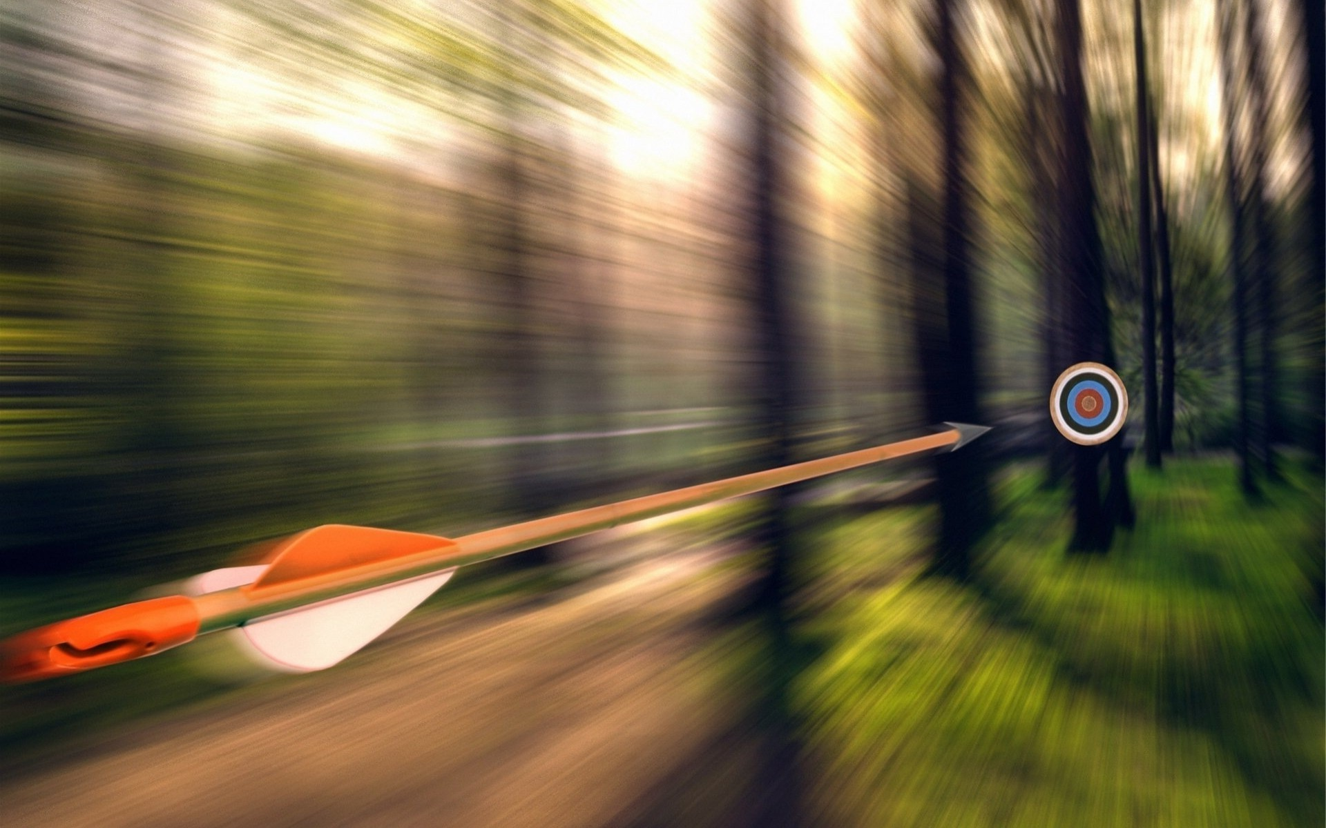 3d Motion Wallpaper Download Arrows Motion Blur Forest Targets Trees Wallpapers Hd