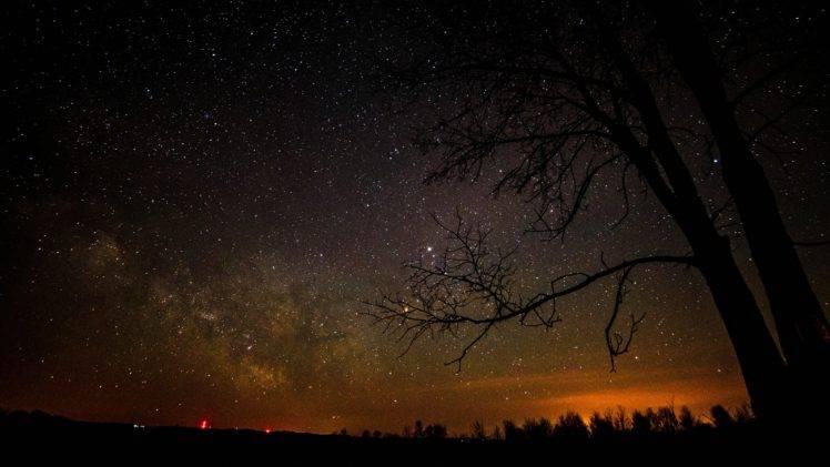 Assassination Classroom Fall Wallpaper Stars Silhouette Trees Night Sky Wallpapers Hd