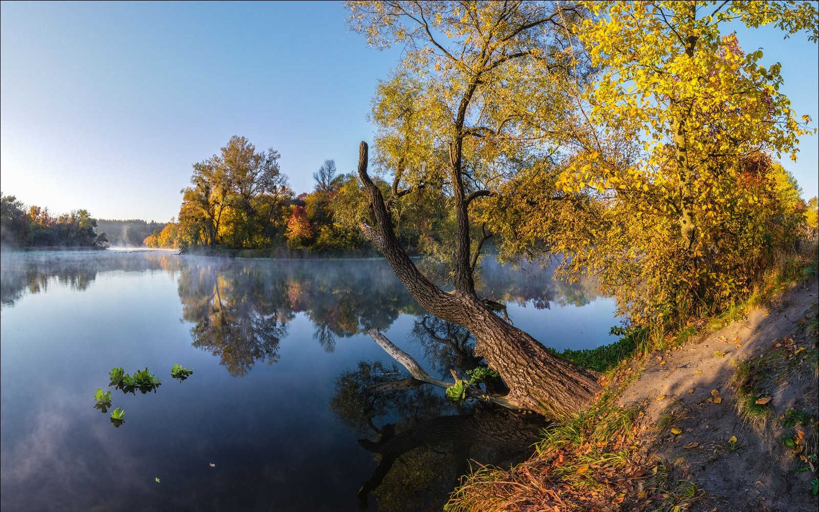 3d Hd Scenery Wallpapers Landscape Photography Nature Fall River Trees