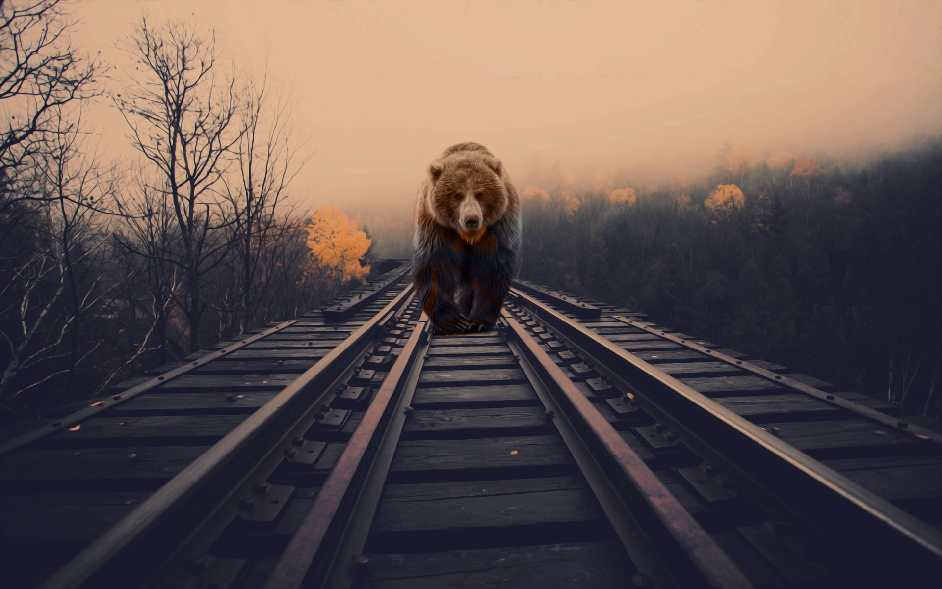 3d Wallpapers For Home Screen Bears Nature Animals Photo Manipulation Railway