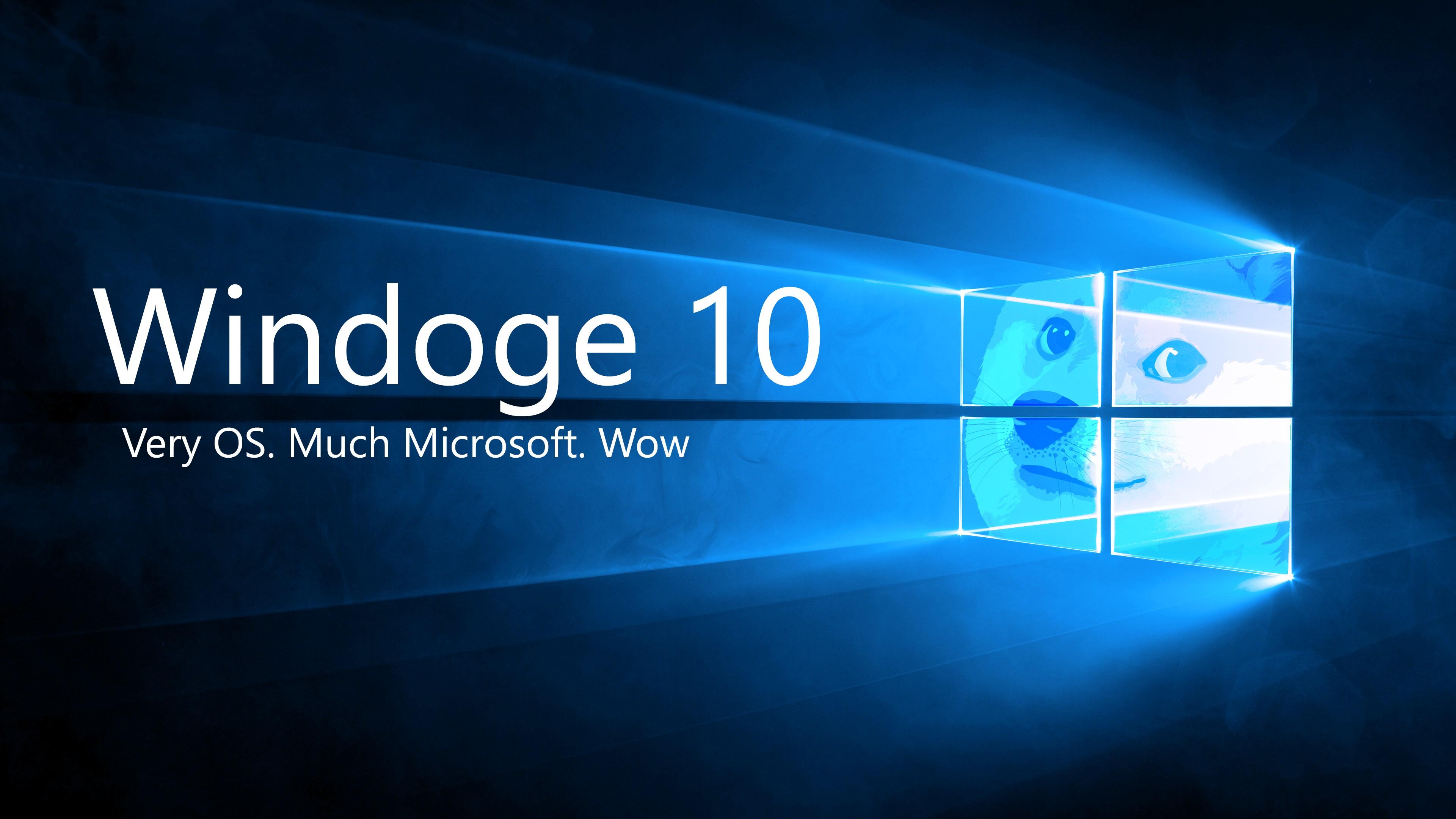 4k Resolution 4k Car Wallpaper Doge Microsoft Windows Shiba Inu Memes Wallpapers Hd