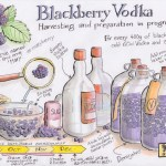 20160925_blackberryvodka_b