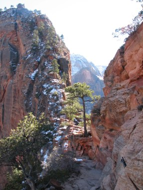 5 Tips to Enhance Your Visit to Zion