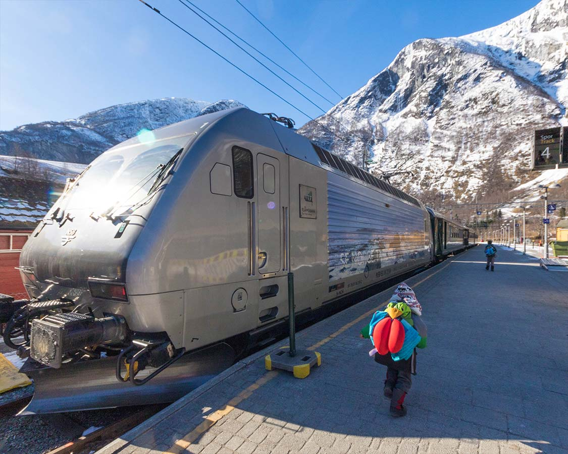 Norway Train Understanding The Norway In A Nutshell Bergen To Oslo Tour