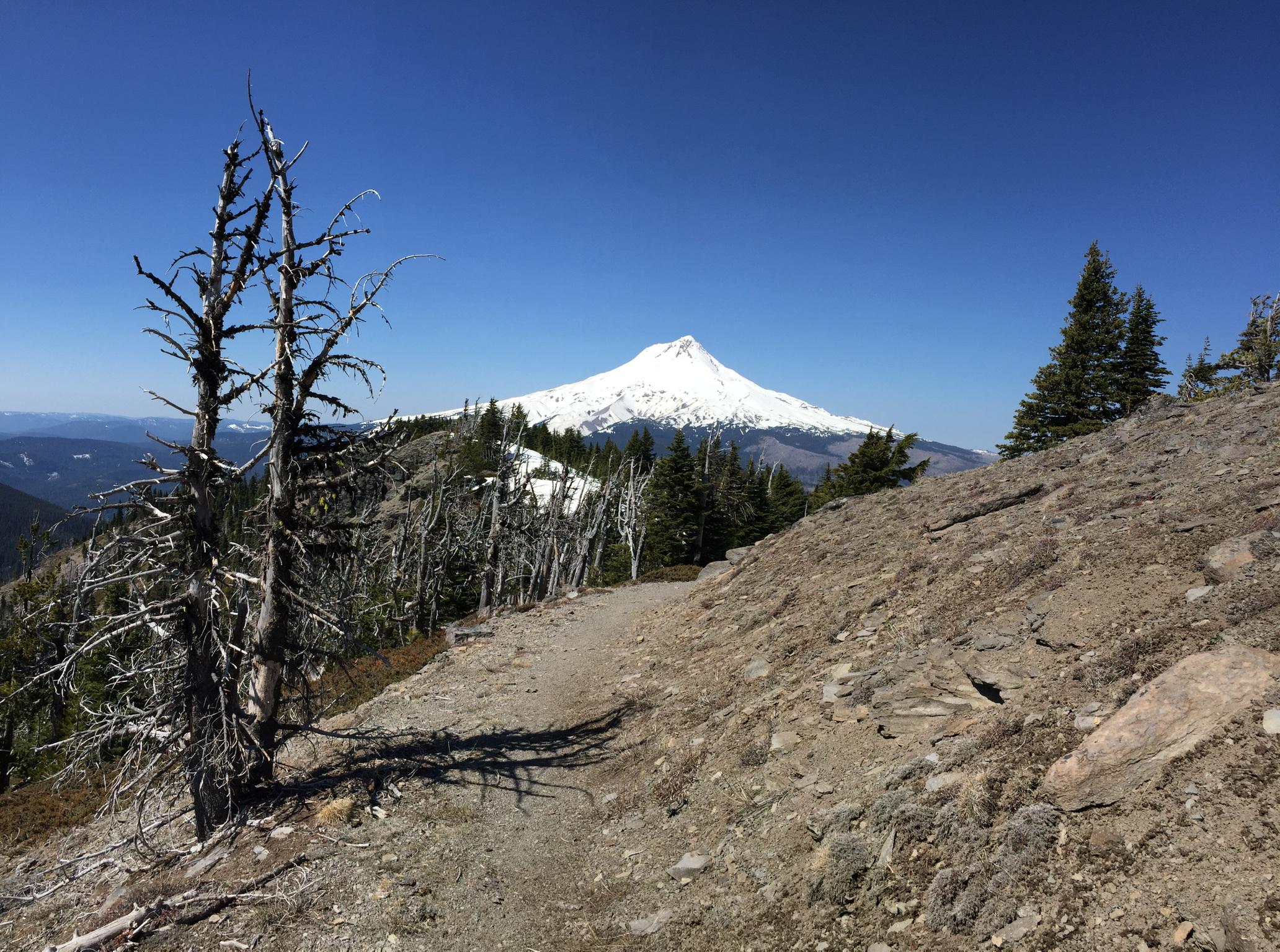 Hiking Lookout Mountain, Oregon