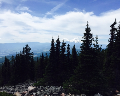 View of Mt Hood from Mt Defiance.
