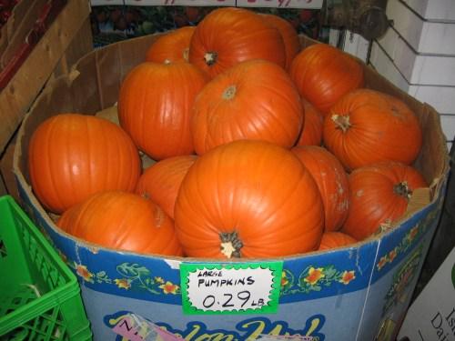 with halloween just around the corner...