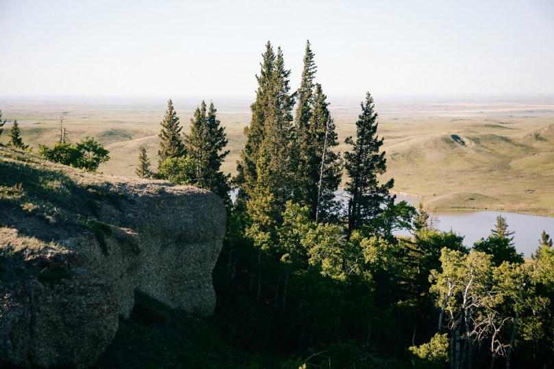 A view from the top of Conglomerate Cliffs.
