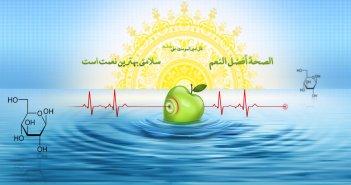 Islam Health