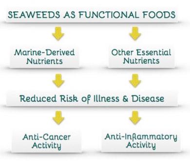 seaweeds-functional-foods