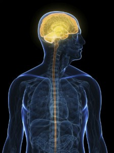interpersonal neuro
