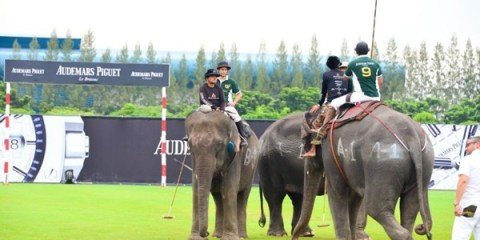WTFSG_audemars-piguet-2014-kings-cup-elephant-polo-tournament_1
