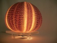 Sea urchin lamp - the design of the aquatic animal ...