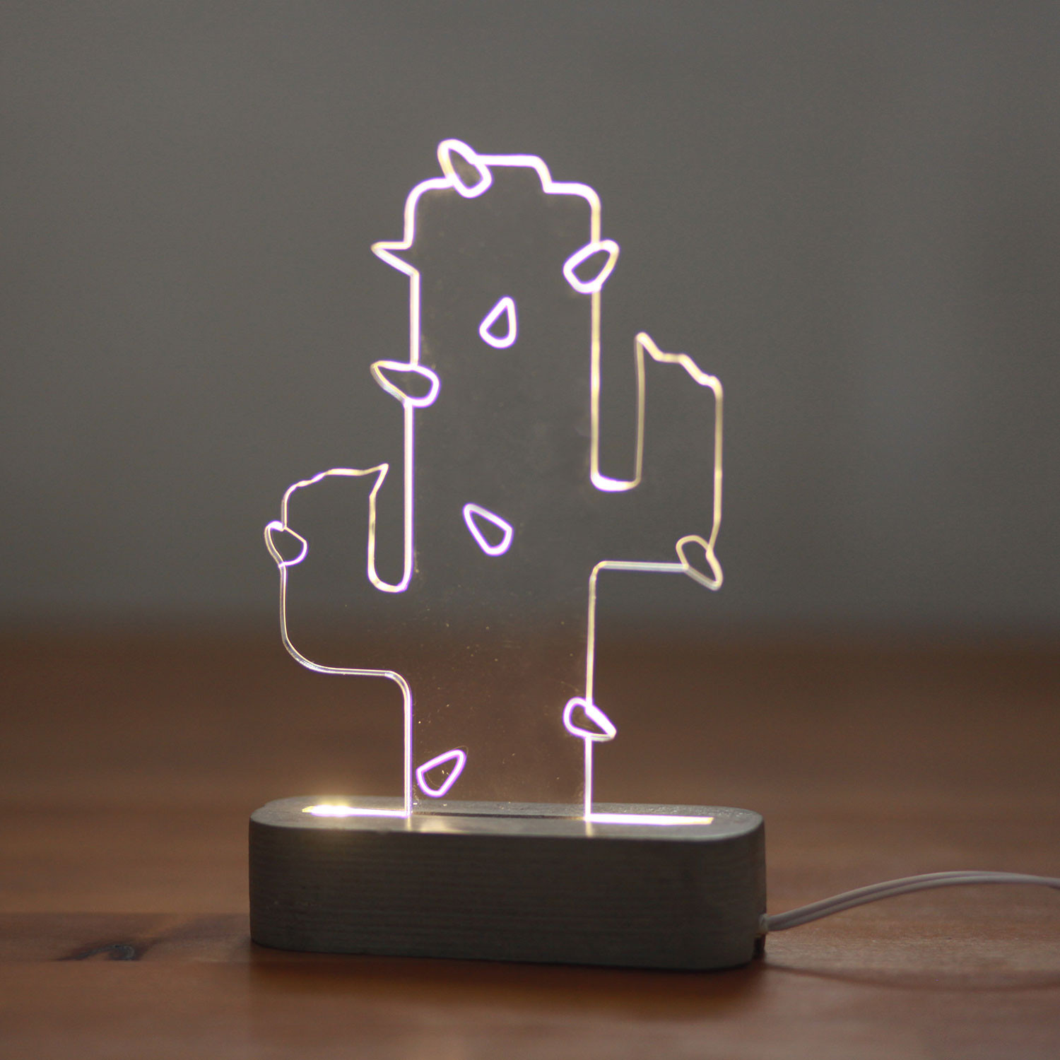 Cactus Verlichting Cactus Lamp Bring Out A Natural Look In Your Home