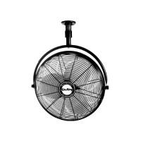 oscillating ceiling fan | Roselawnlutheran