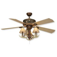 Creating the house mood - 20 best Rustic ceiling fans ...