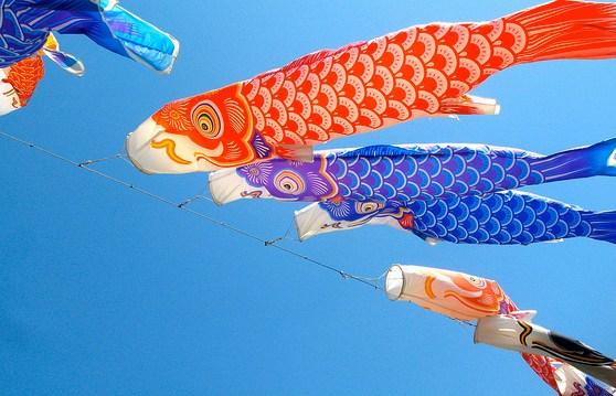 Welche Fische sind gesund und nicht überfischt?