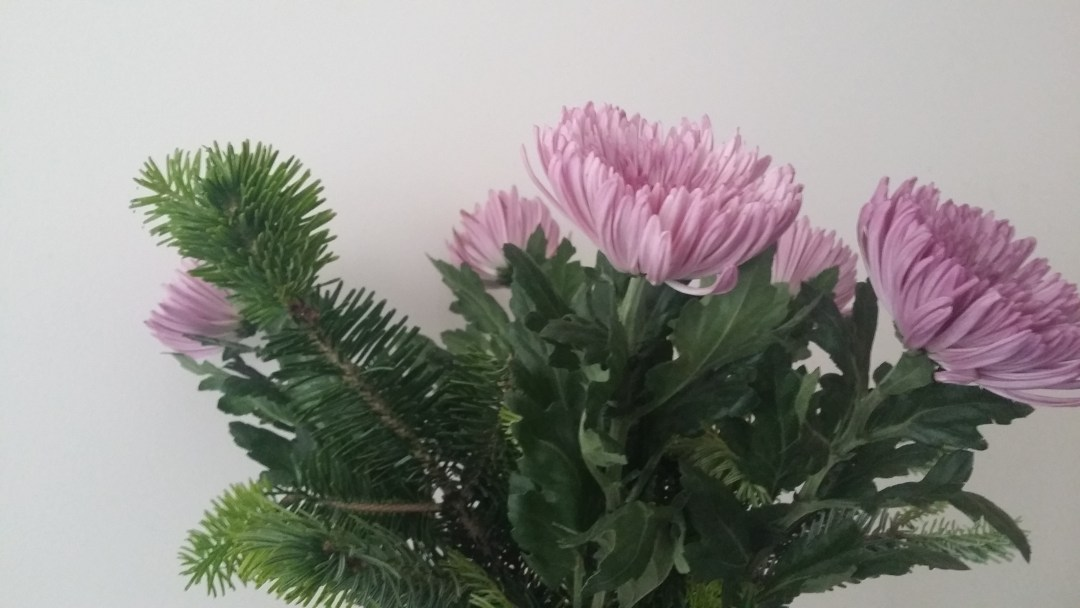 Pine and Purple