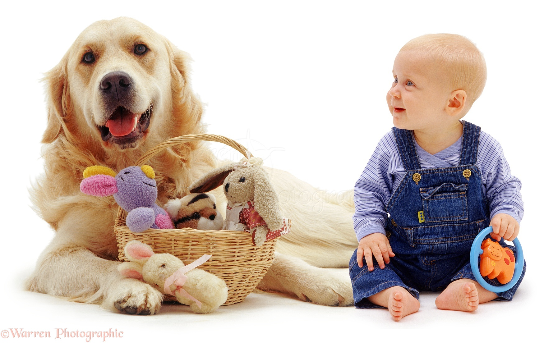 6 Month Old Baby Toys Baby And Retriever With Toys Photo Wp03520