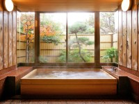 Japanese Bathroom - WASOU