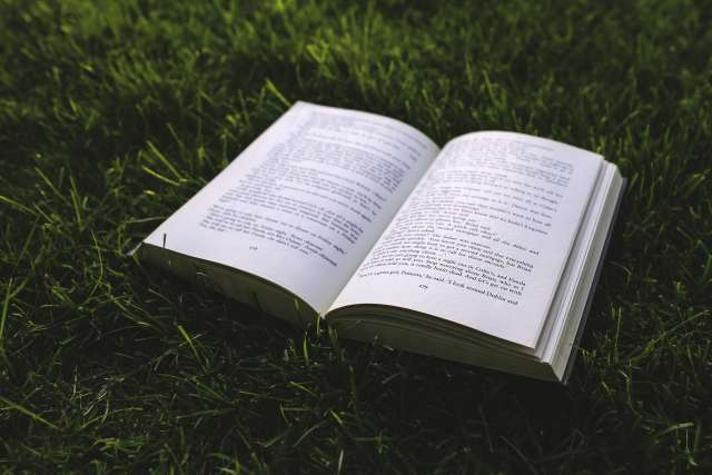 nature-grass-green-book
