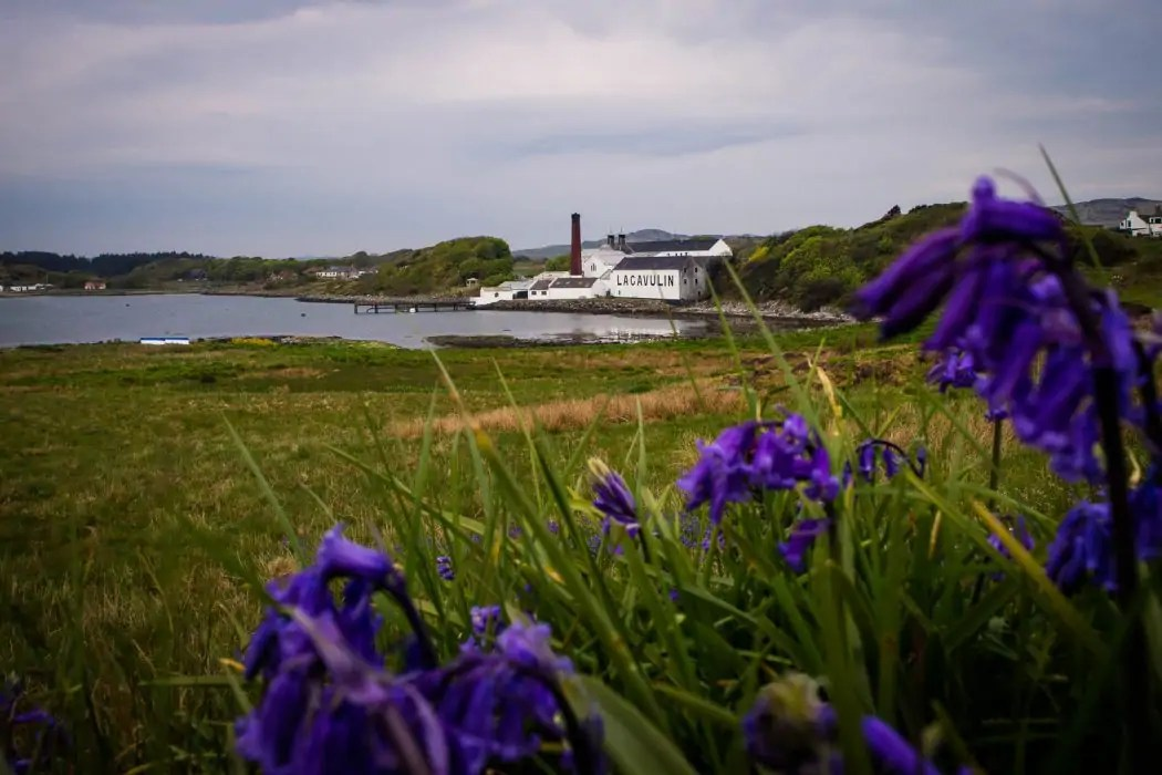 Bed And Breakfast Islay A 4 Day Islay Whisky Tour With Rabbie S Tours Review 2019