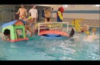 Harlem Shake Water-polo FNCDouai !