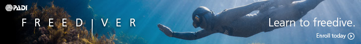 Learn to Freedive in Melbourne, Victoria with WaterMaarq Freediving