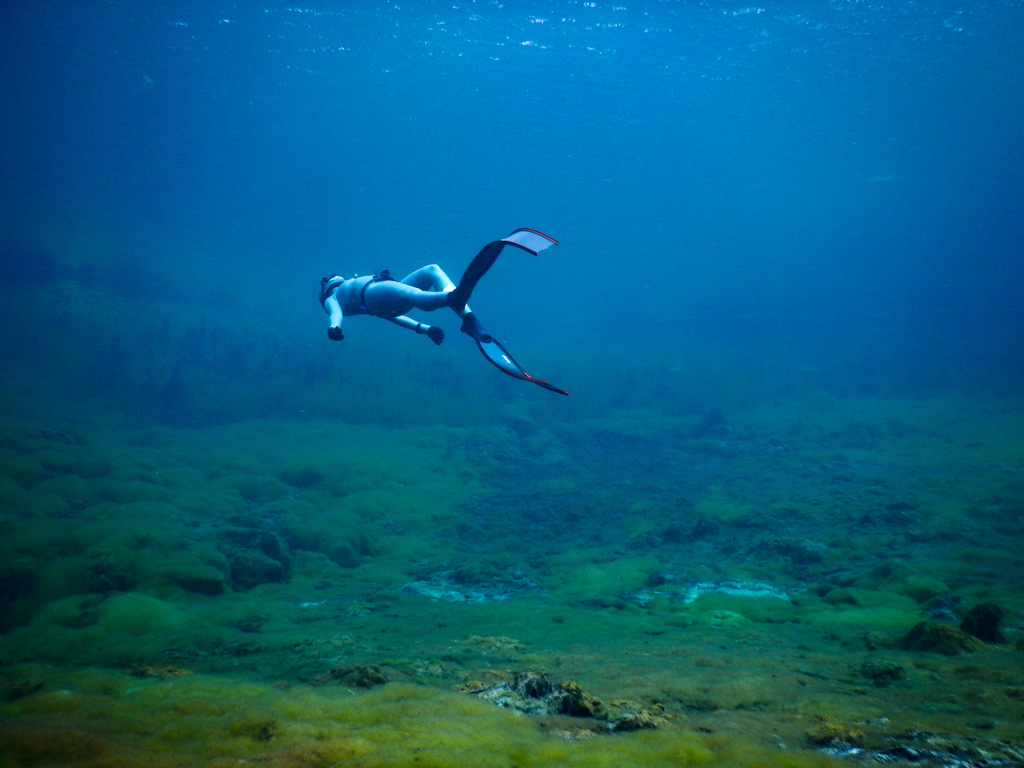 Freediving training and courses in Melbourne, Victoria