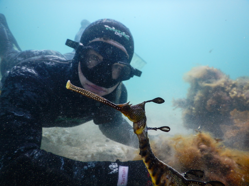 Freediving excursions, scenic eco boat tours, freediving courses in Melbourne, Victoria