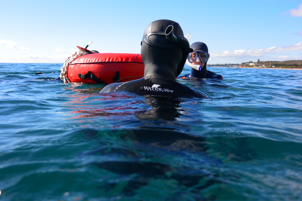 Learn to freedive, freediving courses in Melbourne